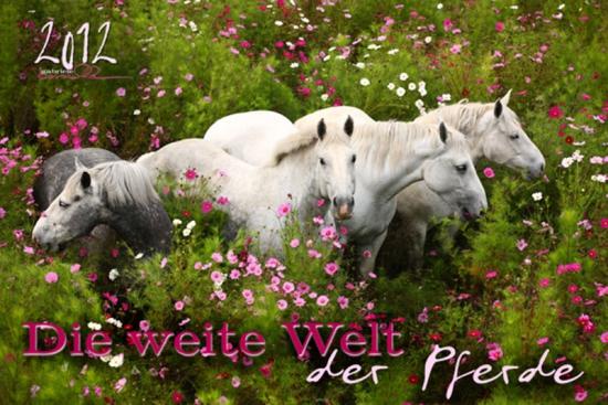 Edition Boiselle 2012  - Die weite Welt der Pferde
