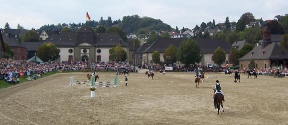 Hengstparade in Dillenburg | Foto: Thomas Damm