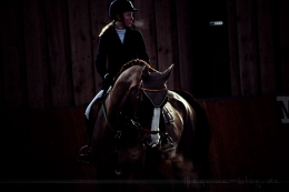 Lichtstimmung | Foto: Romina Ronzon